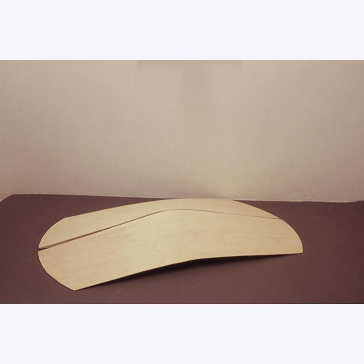 Paolo Radi Emerso 2001 legno curvato cm 80 X 200