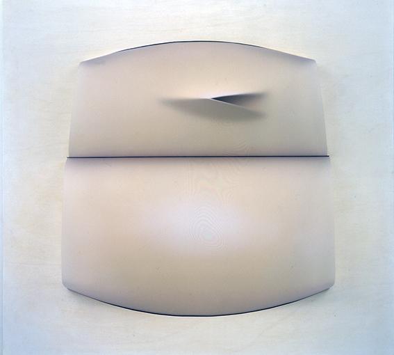 limite condiviso 120 x 110 x14  2004 PVC e acrilico su tavola